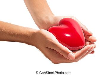coração, branca, -, isolado, mãos