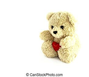 coração, brinquedo, urso teddy, fundo, branca