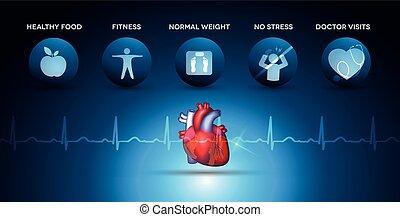 coração, cardiologia, ícones, anatomia, cuidado saúde