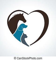 coração, cavalo, love., junto, gato, animal