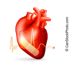 coração, danificado