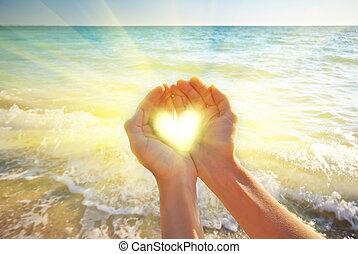 coração, em, feminina, mão.