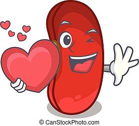 coração, feijão, caricatura, xícara vermelha