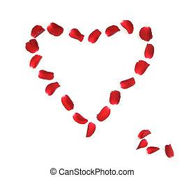 coração, feito, de, pétalas rosa