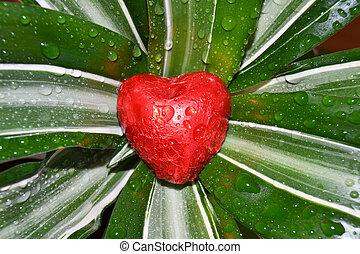 coração, flor