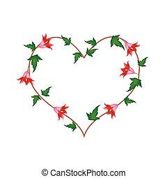 coração, flores, canariensis, forma, canarina, vermelho