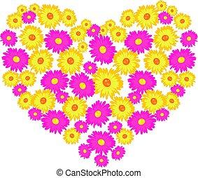 coração, flores