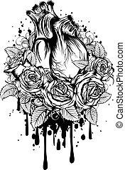 coração, human, rosas