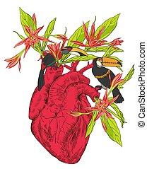 coração humano, com, flores