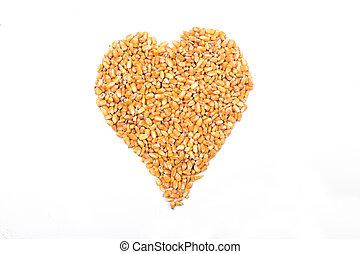 coração, isolado, milho branco