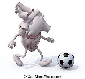 coração, jogo, pernas, órgão, braços, human, futebol