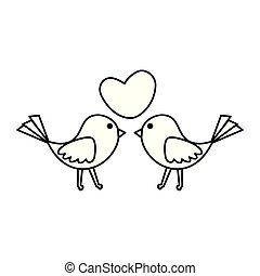 coração, par, ame pássaros