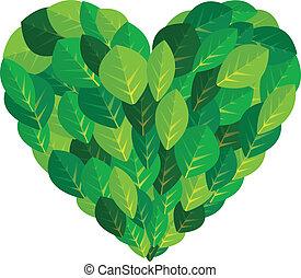 coração, planta, ecologia, folha