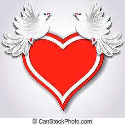 coração, pombos, dois, vermelho