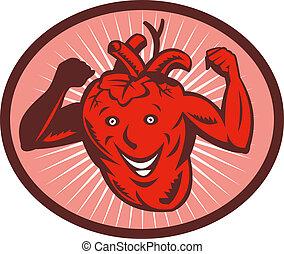 coração, saudável, flexionando músculo, seu, feliz