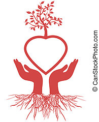 coração, segura, árvore, mão