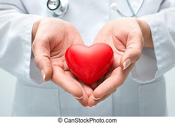 coração, segurando, doutor