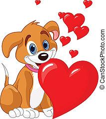coração, segurando, filhote cachorro, vermelho, dela, m