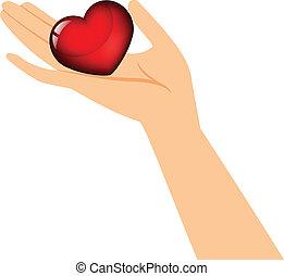 coração, segurando mão