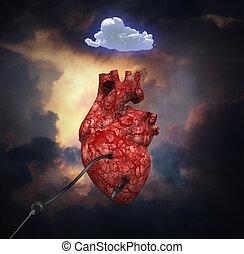 Coração, Vôo