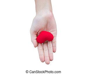 coração vermelho, em, humand, mão