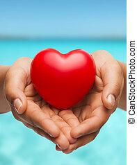 coração, womans, mostrando, cupped dá, vermelho