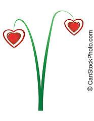 corações, -, flores