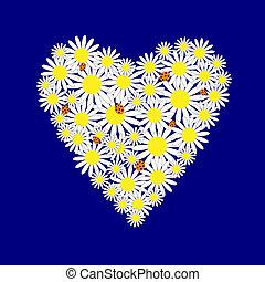 corações, margaridas, fundo