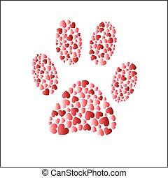 corações, passo, gato