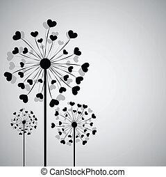 corações, pretas, dandelion
