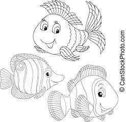 coraal, vissen