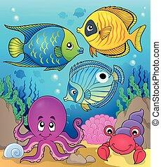 coral, 2, fauna, tema, imagen