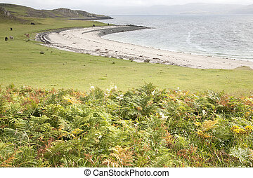 Coral Beaches; Waternish; Isle of Skye; Scotland; UK