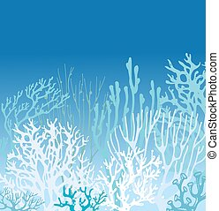 Coral Bleaching under water