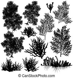 Coral elements - Set of editable vector sea coral...