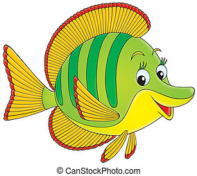 isolated illustration of a tropical fish