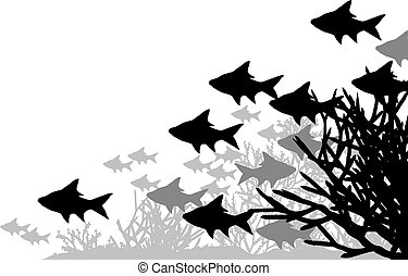 Coral fish - Vector illustration of fish and coral...