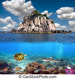 Coral island and reef sharks, Siam Bay, Thailand