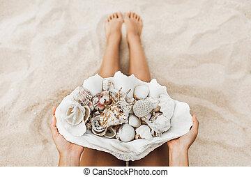coral, manos, tenencia, muchos, tridacna, mujer, océano, ...