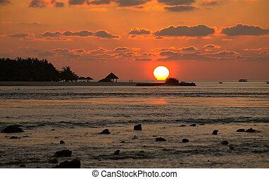 coral, nubes, reef., ritmo, sunset.