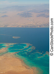 Coral reef ans Red sea