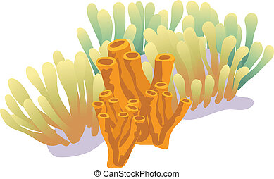 Coral Reef - Coral reef illustration isolated on white...