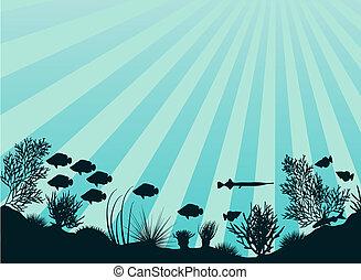Editable vector illustration of an underwater coral reef scene