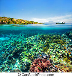 Beautiful Coral reef on background of cloudy sky and volcano