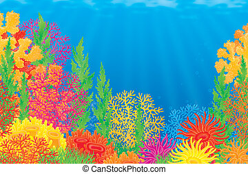 Underwater background with colorful corals of a tropical sea