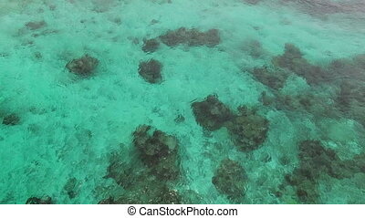 Coral reefs is shot by a drone