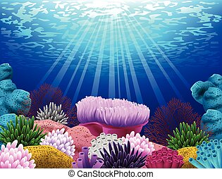 coral, y, conchas, en, el, fondo del mar