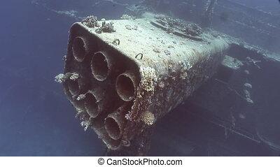 Corals on part of sunken ship Salem Express close up...