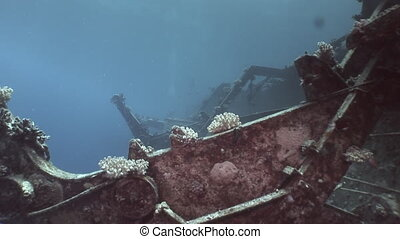 Corals on remains of sunken ships Salem Express underwater in Red Sea in Egypt.