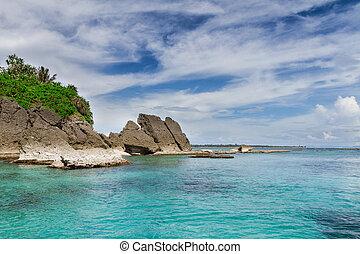 Corals Water Sea